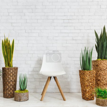 Photo for Home plants in pots and scandinavian chair standing on floor at white brick wall background, copy space. Botanical home decoration concept - Royalty Free Image