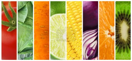 Photo for Set of ripe fruits and vegetables, summer harvest, panorama - Royalty Free Image