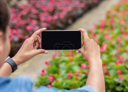 Photo pour Jardin fleuri et gadgets modernes. afro-américaine fille tient smartphone avec écran vide et fait photo de plantation de fleurs en serre, recadrée - image libre de droit