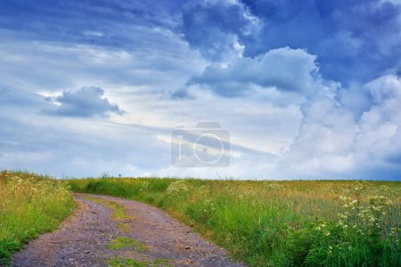 Photo for Summer landscape with green field and road. Nature background. - Royalty Free Image