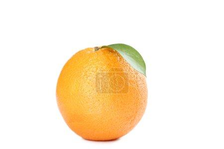Photo pour Fruits orange avec feuilles sur fond blanc - image libre de droit