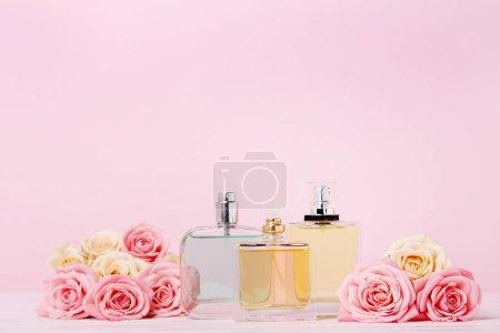 Photo pour Flacons de parfum de roses sur fond rose - image libre de droit