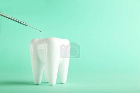 Zahnmodell mit zahnärztlichem Instrument auf grünem Hintergrund