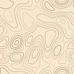 Topographic contours. Actual topographic map. Seam...