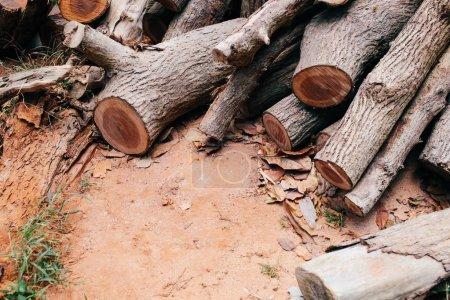 Photo pour Fermez-vous vers le haut de l'arbre brun détaillé bois bûches tronc coupé obtenir empilés-le déboisement et le concept du bois. - image libre de droit