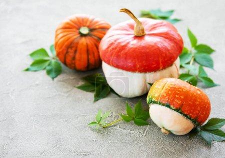 Photo for Autumn arrangement of pumpkins on a concrete background - Royalty Free Image