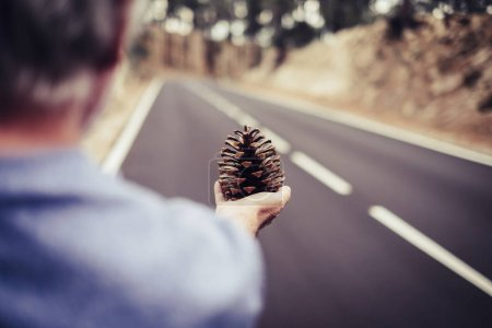 Photo pour Femme âgée vieille main âgée prenant un cône de pin avec longue route asphaltée droite en arrière-plan. forêt et montagne concept de voyage sentiment et contact avec la nature - image libre de droit