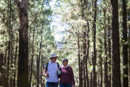 Photo pour Couple de personnes âgées adultes avec sac à dos marchant ensemble au milieu d'une forêt de hauts arbres - image libre de droit