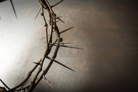 Crown of thorns on background, close-up view