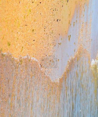 Photo pour Vagues côtières. Eau de mer aux algues. Des algues côtières. Plage de mer - image libre de droit