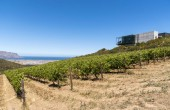 The Waterkloof Wine Estate in Somerset West, Western Cape, South Africa. Overlooking False Bay on the coast.