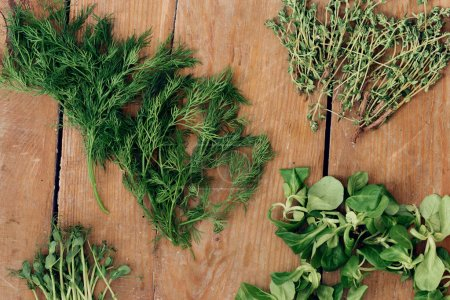 Set variety of organic herbs on wooden table, top view. Pea green sprouts, dill, thyme and mache leaves on wooden table