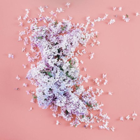 Photo for Lilac flowers on pink background. Minimal floral flat lay concept. Flat lay, top view - Royalty Free Image