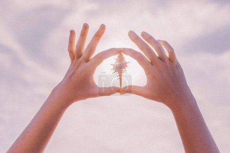 woman hands holding beautiful sea shell close up at sunset