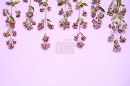Floral wallpaper curb of almond plants on a lilac background.