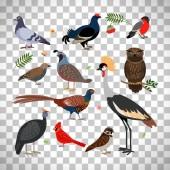 Birds icons on transparent background