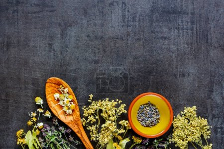 Photo for Wild and Healing herbs for clean eating biohackers paleo diet on vintage background flat-lay, top view. - Royalty Free Image