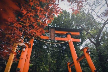 Torii gate of Chureito Pagoda in the spring on daytime in Fujiyoshida, Japan. Vintage tone