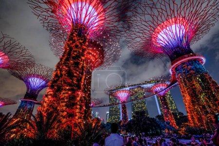 Supertree Singapore Show