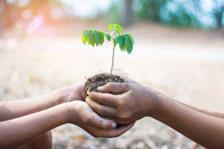 Foto de Mano de niños sosteniendo plantas y suelo con bokeh y fondo de la naturaleza, salvar el mundo y el concepto del Día Mundial del Medio Ambiente en días soleados. sujeto está borroso - Imagen libre de derechos