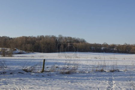 wintry scene of snowy field with fence and trees on background
