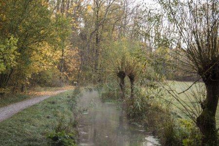 Photo pour Sentier de randonnée d'automne par ruisseau - image libre de droit