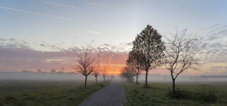 Morning mist over field and pink sky with sunrise
