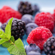 Bunch of mix forest wild berries on a blue plate. ...