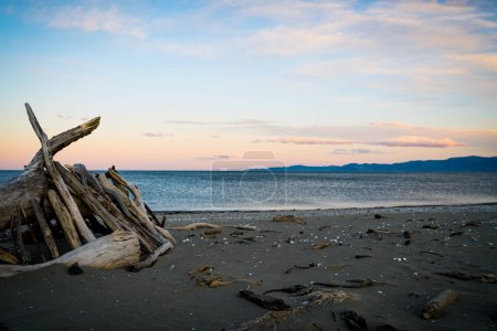 Sunset hues over horizon with driftwood shelter on  Collingwood beach in South Island New Zealand