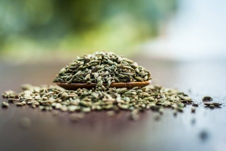 Photo for Close up of dried fennel seeds in bowl - Royalty Free Image