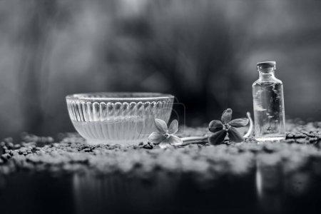 Photo pour Graines de fenugrec crues sur la surface en bois avec un peu d'huile de noix de coco et sa pâte dans un bol en verre utilisé comme remède contre les pellicules. . - image libre de droit