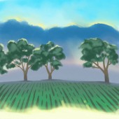 Summer or spring  sunny forest trees and green grass. Green landscape with field and trees.