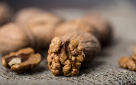 Close view of dry whole walnuts with walnuts kernels on brown sackcloth