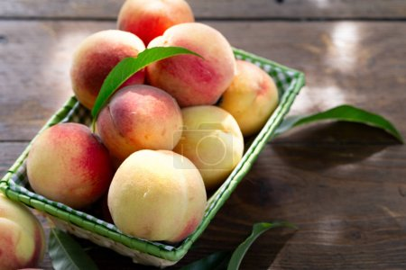 Photo for Fresh peaches fruits with leaves in basket on dark wooden rustic background, top view - Royalty Free Image
