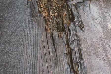 Photo pour En bois brut conseils vieux texture bois endommagé - image libre de droit