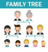 Family Tree diagram of members on a genealogical tree isolated on white background Cartoon vector illustration of family tree big famoly vector Illustration