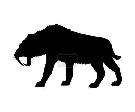 Illustration for Saber toothed tiger silhouette extinct mammalian animal. Vector illustration - Royalty Free Image