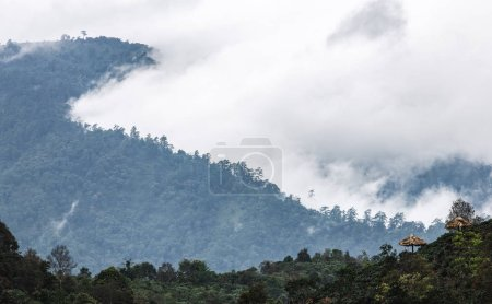 Panorama scene of tropical rainforest coverred by white fog and cloud over slop of hazzy mountain range.