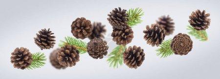 Photo pour Cônes de pin brun avec branches de sapin fermer. Les conifères isolent les cônes et les aiguilles vertes sur fond blanc. Carte postale du Nouvel An, idée de carte de voeux de Noël - image libre de droit