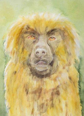 Photo pour Leonberger portrait du chien le plus doux. La technique de tamponnage près des bords donne un effet de mise au point doux en raison de la rugosité de surface modifiée du papier - image libre de droit