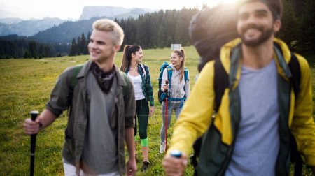 Photo for Group of friends are hiking in mountain on a sunny day - Royalty Free Image