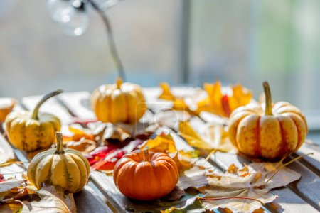 Photo for Pumpkins and leaves on a wooden table. Autumn season time - Royalty Free Image