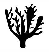 A glyph icon vector of xenia reef