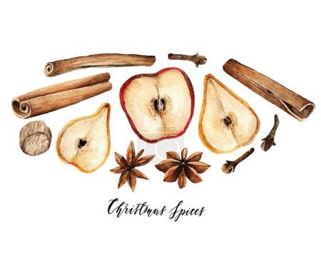 Watercolor elements. Christmas spices for drinks, cinnamon, star anise, cloves, nutmeg, apple, pear, handmade