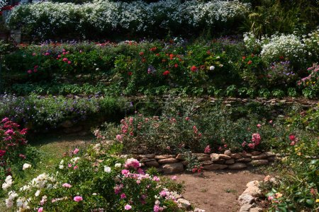 Aesthetic and formal garden design with lines, borders and flower beds.