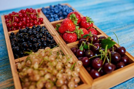 Photo for Cook laid assorted berries in a wooden mold with cells. Interesting serving of fruit, berries and any sweets - Royalty Free Image