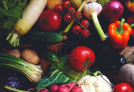 Composition with assorted raw organic vegetables.