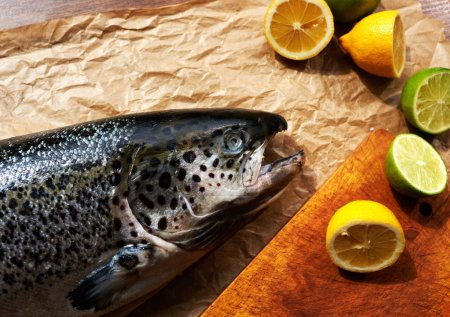 Her husband returned from a fishing trip brought home a large carcass fresh salmon, wife cooked lemon and lime marinade for fish