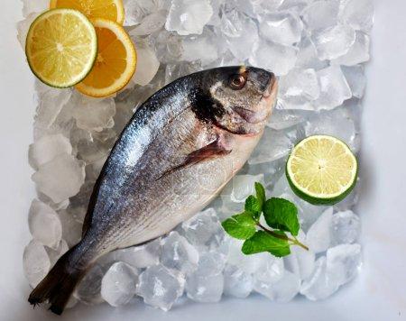 Foto de Mar i sargos la caja con hielo limón lima y menta listo para cocinar - Imagen libre de derechos