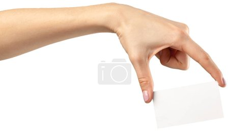 Female hand holding empty paper isolated on white background. Copy paste image or text.
